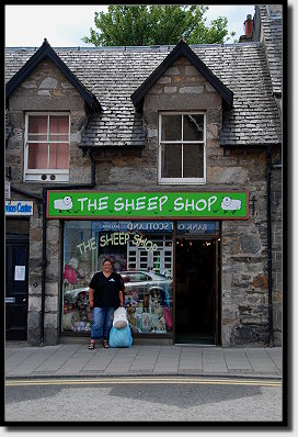 The Sheep Shop