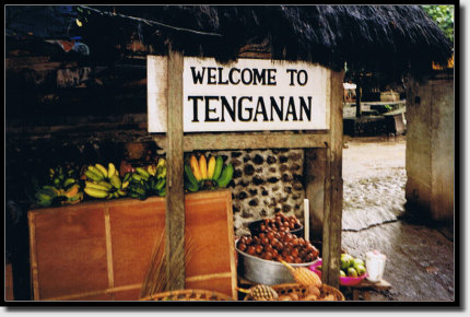 Welcome to Tenganan
